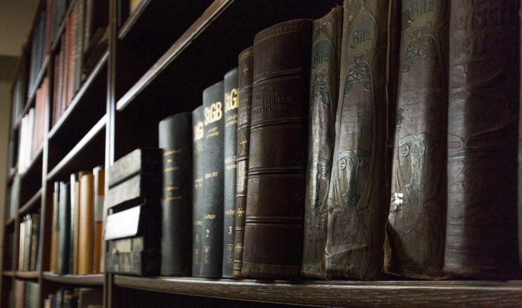 Bücher im Strafrecht